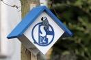 07. Blaumeisen Adler